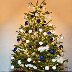 Kerstbomen Amsterdam image 3