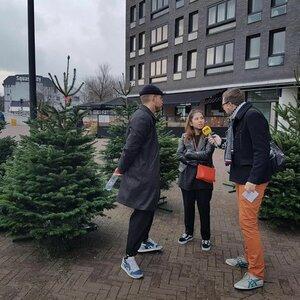 Kerstbomen Amsterdam image 6