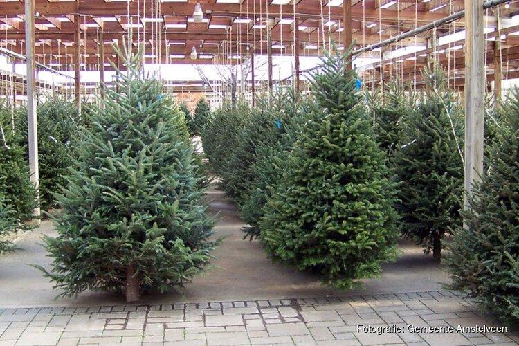 Kerstbomen inzamelen/wegbrengen