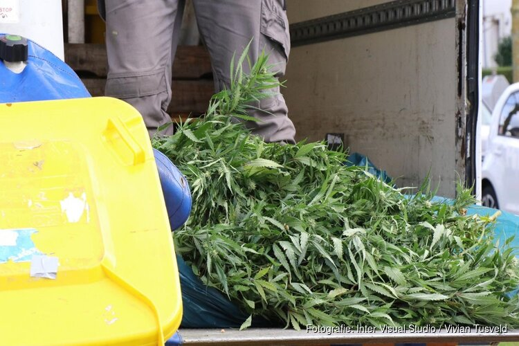 Wietplantage opgerold in woning Amstelveen