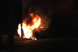 Auto in brand na botsing tegen boom
